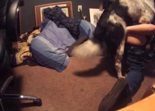 Amazing bestial fucking is happening in this bedroom